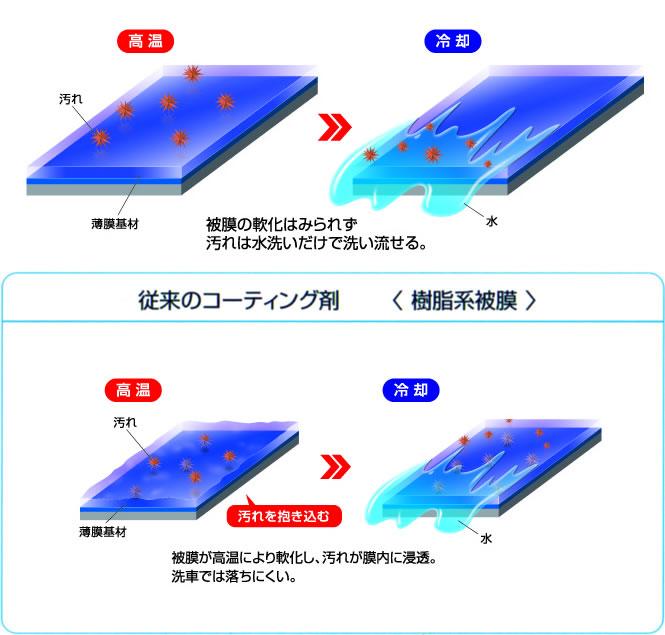 realglasscoat1.jpg